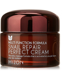 MIZON Crème visage Régénération intensive au mucus d'escargot Snail Repair Perfect Cream 50ml
