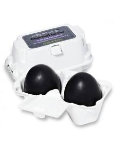 HOLIKA HOLIKA Savon Visage Anti-pores Dilatés au Charbon Smooth Charcoal Egg Soap 100g